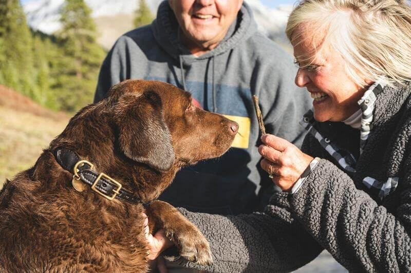Супраги с собакой